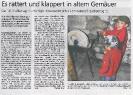 Pressebericht Mühlentag 2011